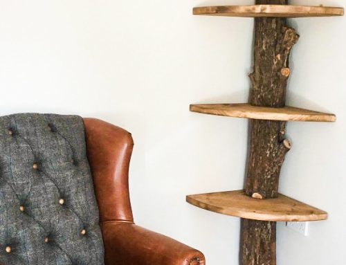 A Natural shelving unit created around the trunk of a full tree round.